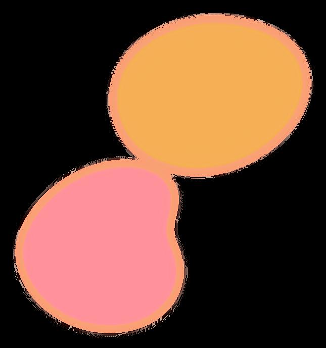 yellow-pink-bg-2